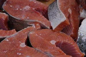 salmon  by Andrea Pokrzywinski