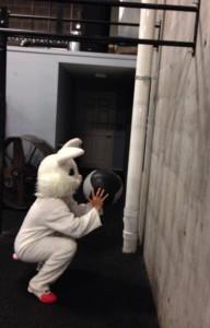 tevor bunny