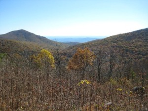 A view from a hiking/camping trip along the Appalachian Trail about four years ago in late October. Many of the trees are already dead but this is just one of hundreds of spectacular views the Shenandoah Valley provides.